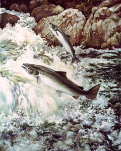 atlantic_salmon_4by5inches